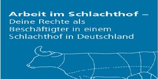 """Faltblatt """"Arbeit im Schlchthof"""""""